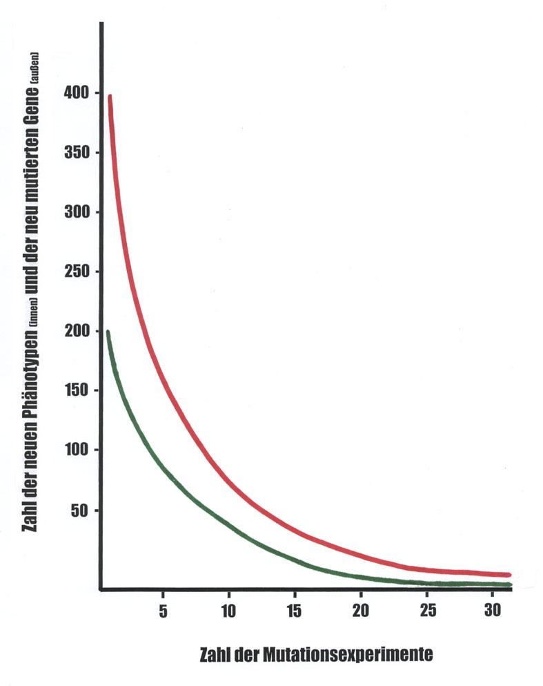 W.-E. Loennig: Gesetz der rekurrenten Variation